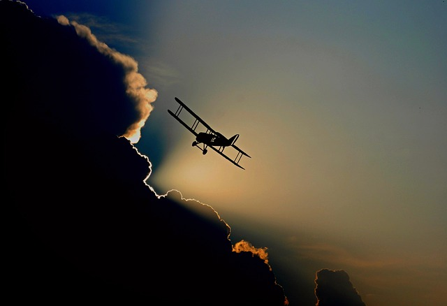 5 Ways to Celebrate National Aviation Day with Family History